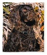 Boykin Spaniel Portrait Fleece Blanket