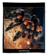 Brachypelma Smithi - Redknee Tarantula Fleece Blanket