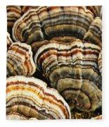 Bracket Fungus 1 Fleece Blanket