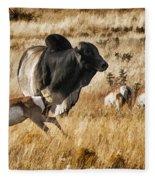 Brahma Bull Meets The Pronghorn Fleece Blanket