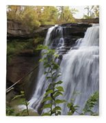 Brandywine Falls Fleece Blanket