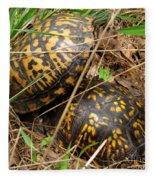 Breeding Box Turtles Fleece Blanket