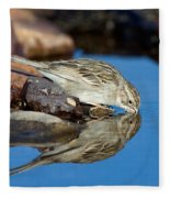 Brewers Sparrow At Waterhole Fleece Blanket