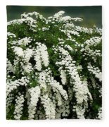 Bridal Wreath Spirea - White Flowers - Florist Fleece Blanket