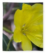 Bridges Evening Primrose Fleece Blanket
