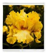 Bright Bright Spring Yellow Iris Flower Fine Art Photography Print  Fleece Blanket