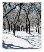 Bright Day Fleece Blanket