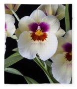 Bright Miltonia Orchids Fleece Blanket