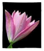 Bright Pink Trumpet Lily  Fleece Blanket