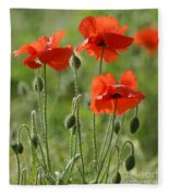 Bright Poppies 1 Fleece Blanket