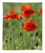 Bright Poppies 2 Fleece Blanket