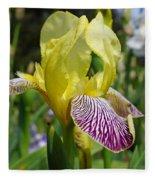 Bright Yellow Purple Iris Flower Irises Fleece Blanket