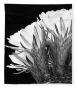 Brilliant Blossoms Diptych Left Fleece Blanket