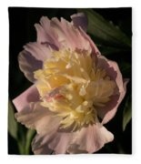 Brilliant Spring Sunshine - A Showy Pink Peony From My Garden Fleece Blanket