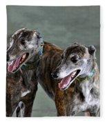 Brindle Greyhound Dogs Usa Fleece Blanket