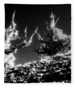 Bristlecone Twins In Infrared Fleece Blanket