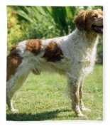 Brittany Dog, Standing Side Fleece Blanket