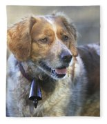 Brittany Spaniel Fleece Blanket