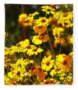 Brittle Bush In Bloom  Fleece Blanket