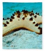 Brittle Star Fish Fleece Blanket