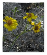 Brittlebush Flowers Fleece Blanket