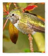 Broad Tailed Hummingbird Fleece Blanket