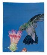 Broadbill Hummingbird Feeding At Flower Fleece Blanket
