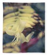 Bromeliaceae - Alcantarea Geniculata Fleece Blanket