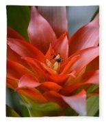 Bromeliad I Fleece Blanket