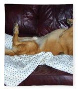 Bronson And His Ball Fleece Blanket