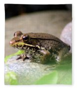 Bronze Frog Fleece Blanket