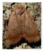 Bronze Moth Fleece Blanket