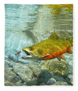 Brook Trout And Artificial Fly Fleece Blanket