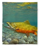 Brook Trout And Royal Coachman Fleece Blanket