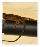 Brown Anole On Pipe Fleece Blanket