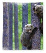 Brown Bear Climbing Lesson Fleece Blanket