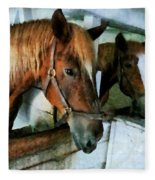 Brown Horse In Stall Fleece Blanket