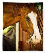 Brown Horse Fleece Blanket