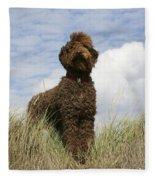 Brown Labradoodle Fleece Blanket