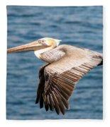 Brown Pelican Flying Fleece Blanket
