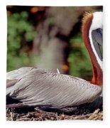 Brown Pelican Incubating Eggs Fleece Blanket