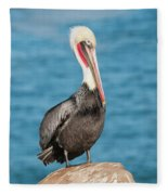 Brown Pelican Pelecanus Occidentalis Fleece Blanket