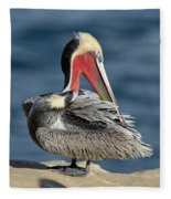 Brown Pelican Preening Fleece Blanket