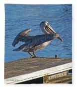 Brown Pelican Takes Flight Fleece Blanket