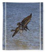 Brown Pelican - Triptych Fleece Blanket
