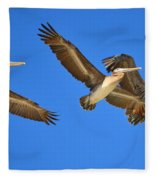 Brown Pelicans In Flight Fleece Blanket