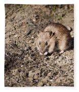 Brown Rat Fleece Blanket