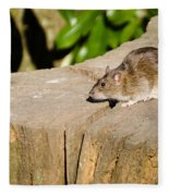 Brown Rat On Log Fleece Blanket