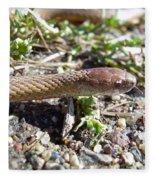 Brown Snake Fleece Blanket