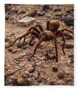 Brown Tarantula Fleece Blanket